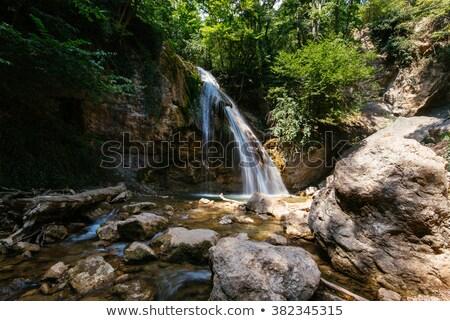 Küçük doğal çağlayan park Stok fotoğraf © Carpeira10