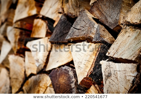 burning wood and chainsaw detail Stock photo © prill