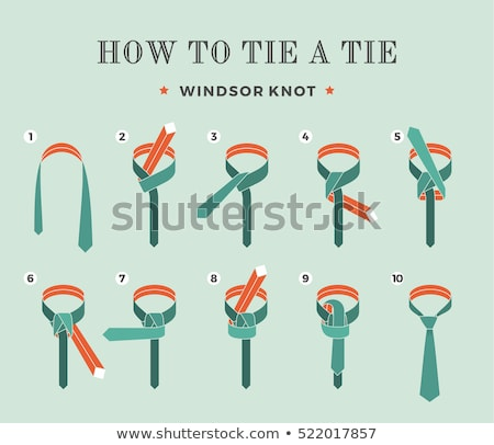 Windsor knot stock photo © danielgilbey