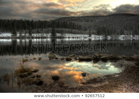 Schluchsee in the Black Forest Stock photo © prill