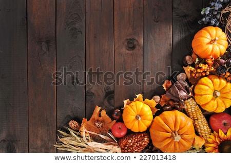 осень листьев мнение традиционный белый Сток-фото © klsbear