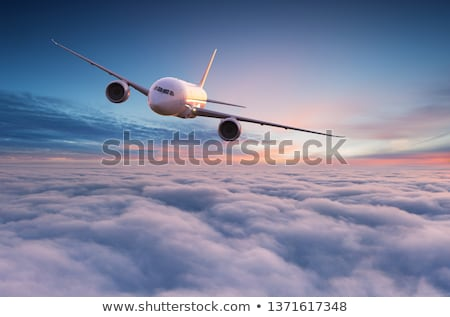 airplane is flying in the sky stock photo © ajlber