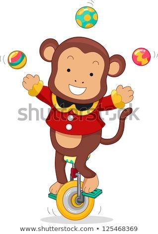 Cirkusz majom zsonglőrködés rajz illusztráció lovaglás Stock fotó © lenm