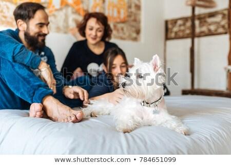 пару · кровать · дочь · домой · молодые · смеяться - Сток-фото © photography33