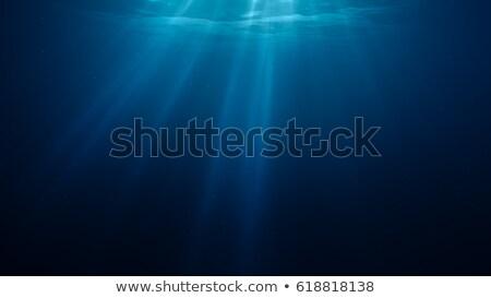 воды · Лучи · Мальдивы · природы · свет · фон - Сток-фото © otohime