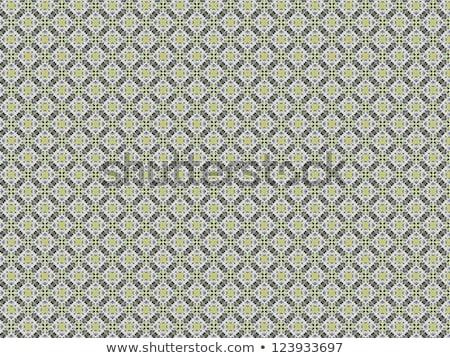 Klasszikus rongyos stílusos minták retro végtelenített Stock fotó © H2O