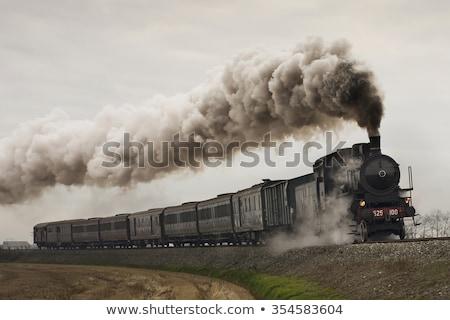 Oude stoomlocomotief klein groene rook trein Stockfoto © taden