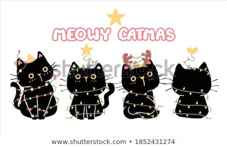 jonge · kat · christmas · hoed · witte · kitten - stockfoto © mkucova