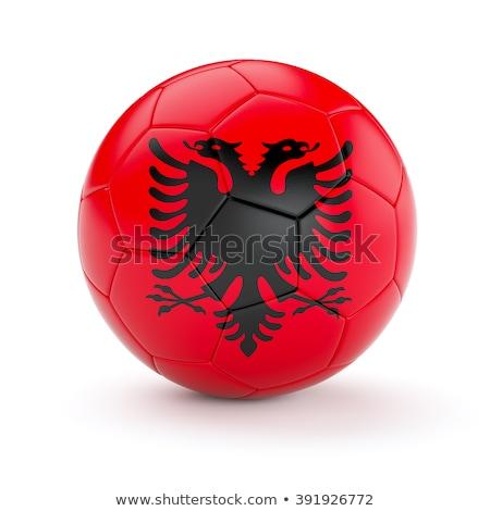 Futebol bandeira Albânia grama verde futebol campo Foto stock © MikhailMishchenko