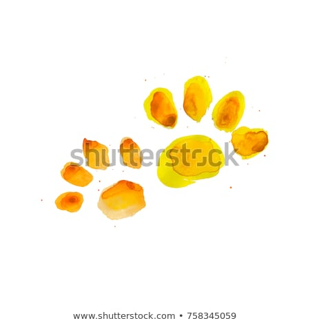 abstract bright paw prints Stock photo © burakowski