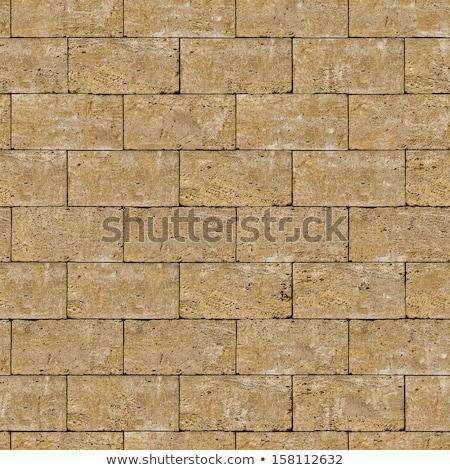 Coquina Wall. Seamless Tileable Texture. Stock photo © tashatuvango