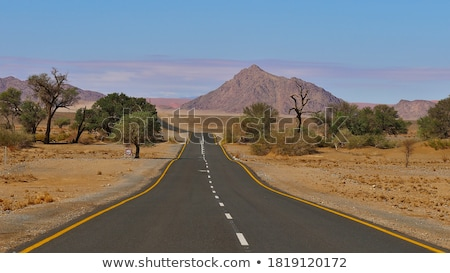 çöl · karayolu · Namibya · yol · Afrika · gökyüzü - stok fotoğraf © imagex