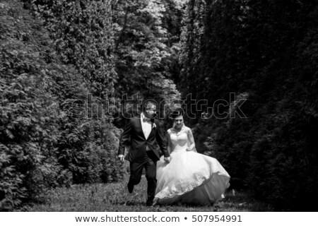 Senior couple running though field Stock photo © monkey_business