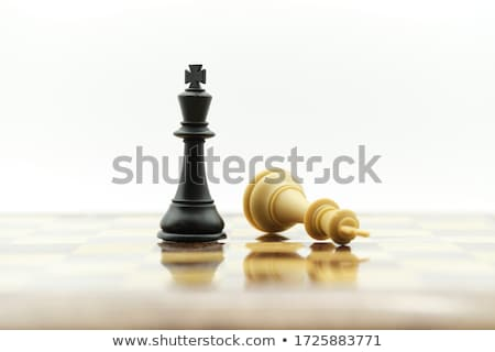 Schaken schaakmat schaakbord cool paard Blauw Stockfoto © claudiodivizia