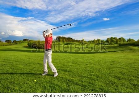 jogador · de · golfe · menina · ilustração · feminino · golfball · clube - foto stock © tikkraf69