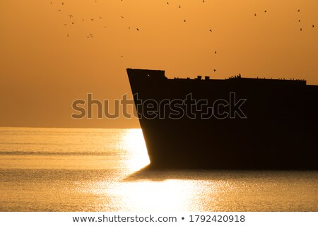 Rust Shipwreck over the sea  Stock photo © hin255