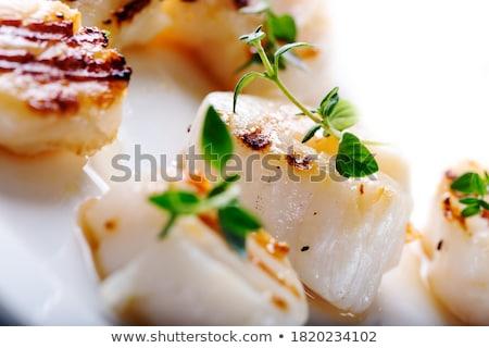 seared scallop stock photo © m-studio