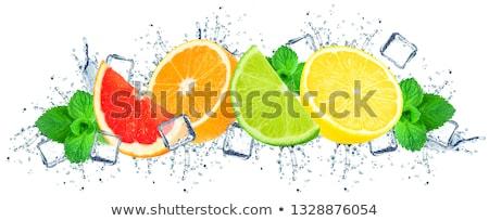 narenciye · meyve · su · narenciye · düşen · su · damlası - stok fotoğraf © silroby