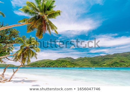 Stock fotó: Beach On Tropical Island Clear Blue Water Sand Clouds