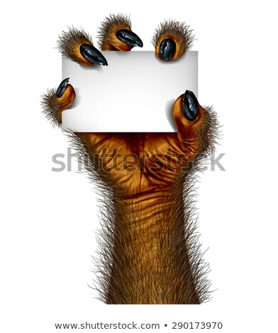 Werewolf Blank Card Stock photo © Lightsource