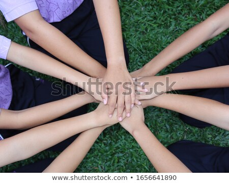 Friends have combined hands together Stock photo © Paha_L