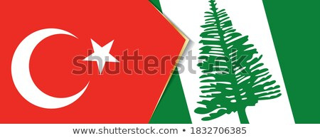 Törökország Norfolk sziget zászlók puzzle izolált Stock fotó © Istanbul2009