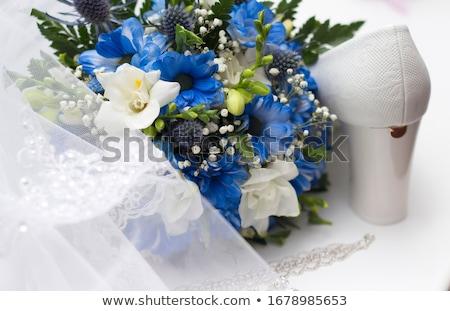 arany · nyaklánc · kék · izolált · fehér · kő - stock fotó © gsermek