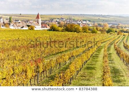 Stock photo: Retz Lower Austria Austria