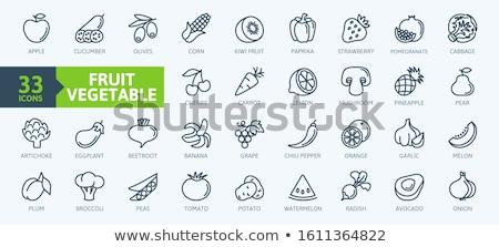 Dinnye vonal ikon háló mobil infografika Stock fotó © RAStudio
