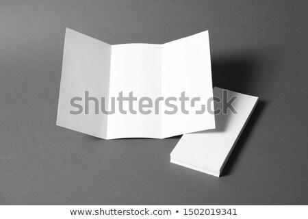 Merk identiteit folders banner ontwerp Stockfoto © Anna_leni