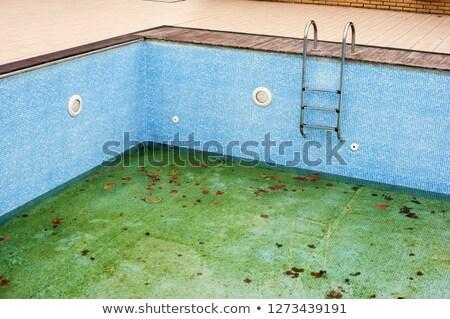 грязные · бассейна · отель · Открытый · осень · природы - Сток-фото © O_Lypa