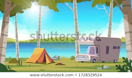 birches on lake shore stock photo © elenaphoto