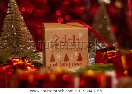 24th December Stock photo © Oakozhan