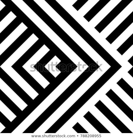 Stok fotoğraf: Vektör · siyah · beyaz · diyagonal · labirent · hatları