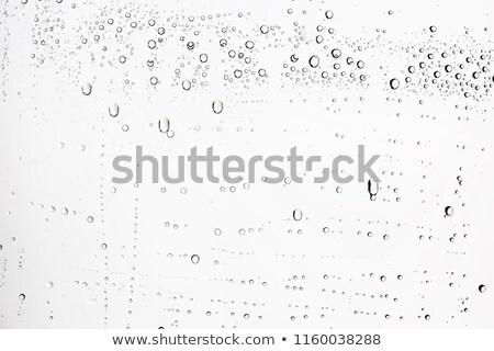 Textured glass bubble Stock photo © SwillSkill