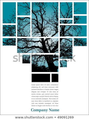 Autumn flyer page layout template  Stock photo © orson
