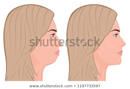 lower jaw isolated. Bones face vector illustration Stock photo © popaukropa