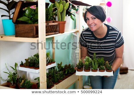 Mature woman holding plants in garden Stock photo © IS2