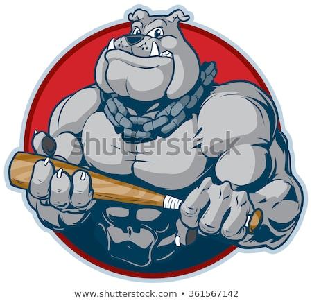 Dog baseball player holding bat Stock photo © orensila