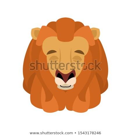 Сток-фото: лев · спальный · лице · Аватара · спящий