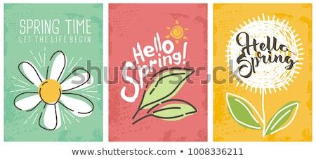 ハロー · 春 · 文字 · テンプレート · 実例 · 花 - ストックフォト © ikopylov