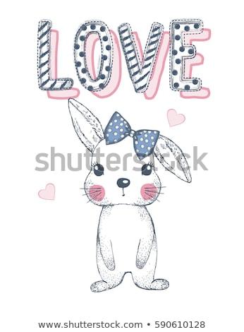 幸せ かわいい 面白い ウサギ 中心 冬 ストックフォト © rwgusev