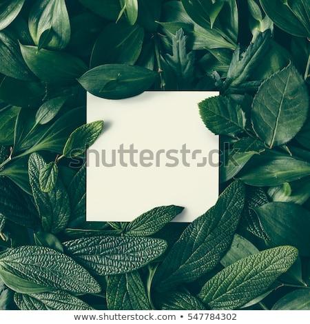 Made In Nature - Nature Concept.  Stock photo © tashatuvango
