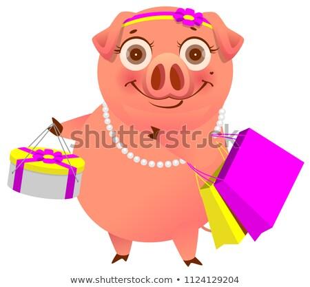 Feliz desenho animado porco compras feminino sacos Foto stock © orensila