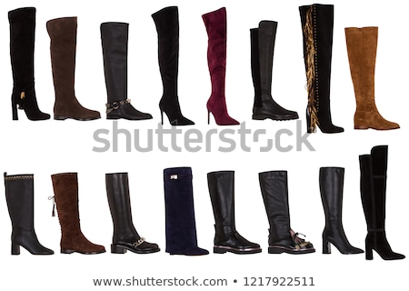 Women's boots stock photo © anyunoff