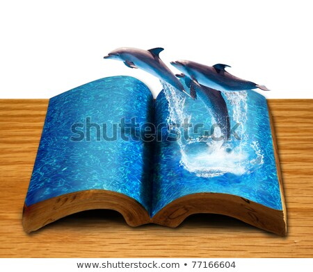 Magic Book With Three Dolphins Jump From Book Page Stok fotoğraf © SuriyaPhoto