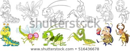 漫画 トンボ 愛 実例 動物 笑みを浮かべて ストックフォト © cthoman