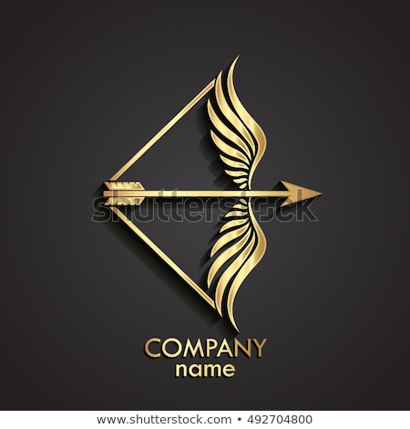 Boeg pijl vector teken logo element Stockfoto © blaskorizov
