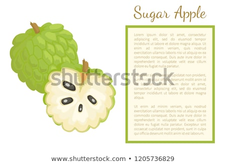 Sugar-Apple, Sweetsop Custard Apple Poster Text Stock photo © robuart
