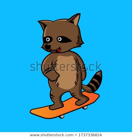 Wasbeer spelen skateboard karakter illustratie achtergrond Stockfoto © colematt